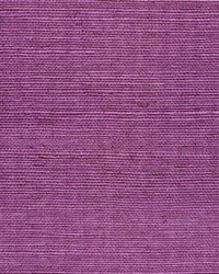Sisal WSS4560 WT Mulberry by