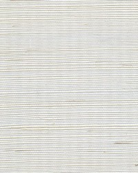 Metallic Sisal WSS4567 WT Sand Dollar by
