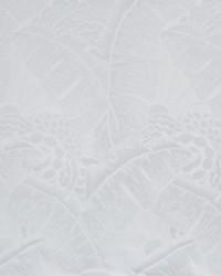 Coco De Mer Pearl Grey by