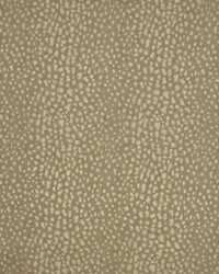 Nairobi Leopard Stone by  Ralph Lauren Wallpaper
