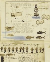 Captains Log Parchment by