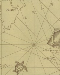 Searsport Map Parchment by