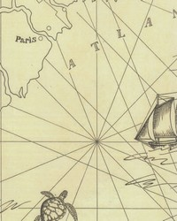 Searsport Map Bone by