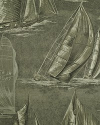 Boon Island Toile Squall by