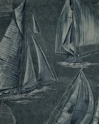 Boon Island Toile Midnight by
