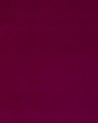 Nottingham Velvet Amaranth by