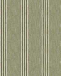 Madone Stripe Grass by