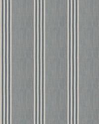 Madone Stripe Denim by