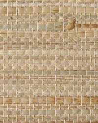Resource II TR229 by  Thybony Wallcoverings
