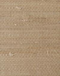 Resource II TR230 by  Thybony Wallcoverings