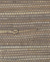 Resource II TR235 by  Thybony Wallcoverings