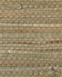 Resource II TR241 by  Thybony Wallcoverings