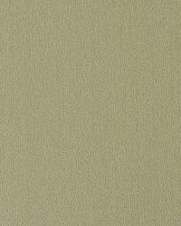 Argentina Green by  Thybony Wallcoverings