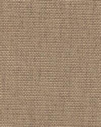 Magnolia Fabrics Cachay Earth Fabric