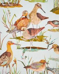 Green Bird Fabric  Nicoba Duckteal