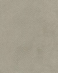 Magnolia Fabrics Degraw Fog Fabric