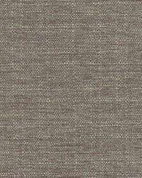Magnolia Fabrics Gonzo Gray Fabric