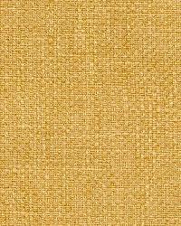 Magnolia Fabrics Panetta Sunkist Fabric