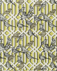Green Birds Fabric  Aviary Trellis Citrine