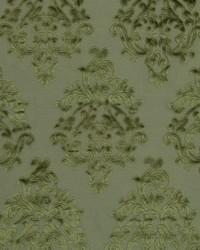 Royal Beauty Moss by