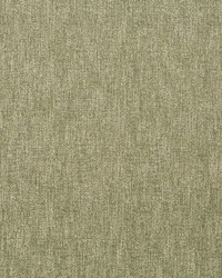 Tonal Chenille Moss by