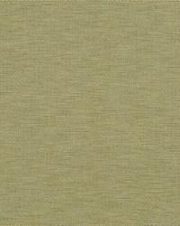 Swift Texture Moss by