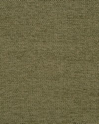 Gem Chenille Moss by