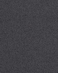 Plethora Charcoal by