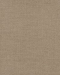 Tidy Texture Taupe by