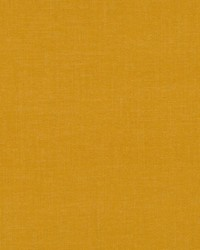 Tidy Texture Marigold by