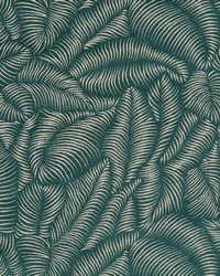 TROPIC FERNS BK JASPER by