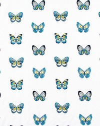 FLUTTER STITCH AQUA by