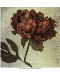 Lush Vintage Florals V by