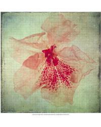 Lush Vintage Florals VI by