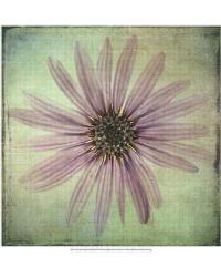 Lush Vintage Florals VIII by