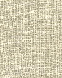 Barbosa Beige Woven Texture by