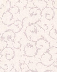 Clover Lavender Acanthus Scroll by  Brewster Wallcovering
