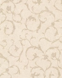 Clover Beige Acanthus Scroll by  Brewster Wallcovering
