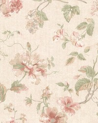 Marnie Peach Peony Trail by  Brewster Wallcovering