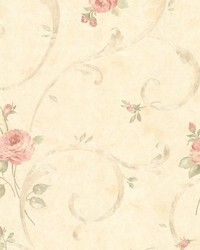 Lotus Pink Floral Scroll by  Brewster Wallcovering