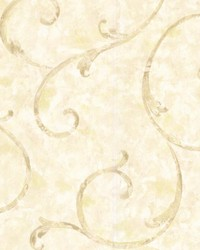 Emilie Cream Scroll by  Brewster Wallcovering