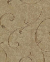 Emilie Sepia Scroll by  Brewster Wallcovering