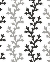 Georgina Black Ombre Coral by