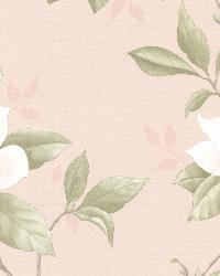 Cressida Blush Magnolia Trail by