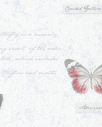 Admiral Blue Butterflies and Script by