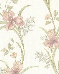 Misty Rose Lily Trail by  Brewster Wallcovering