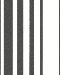 Lewitt Black Barcode Stripe by