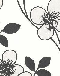 Freud Black Blossom Trail by