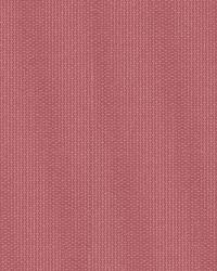 Noland Pink Small Zig Zag Texture by
