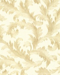 Harper  Gold Acanthus Trail by  Brewster Wallcovering